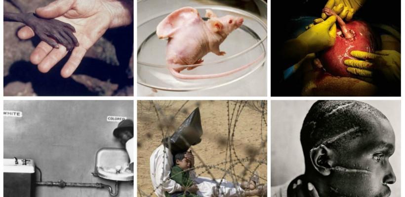 """20 de fotografii care îți vor """"îngheța"""" sângele în vene"""