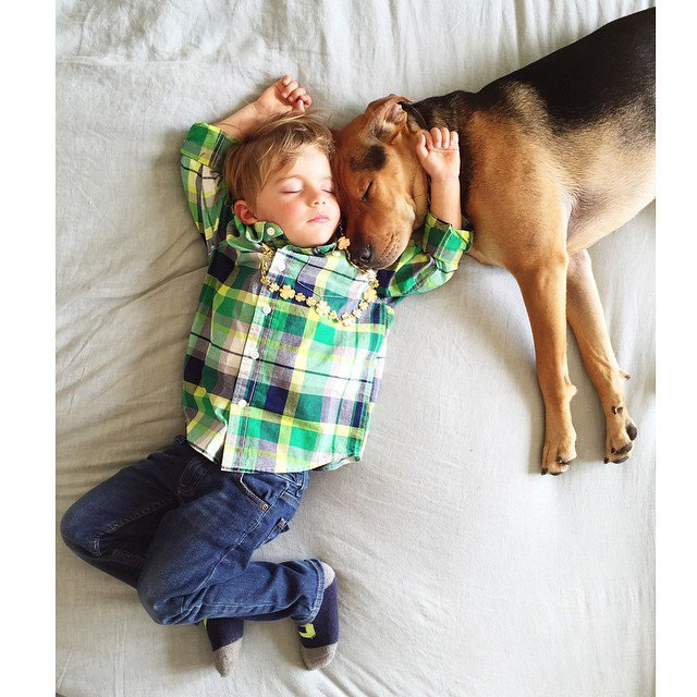 niño-y-perro-12