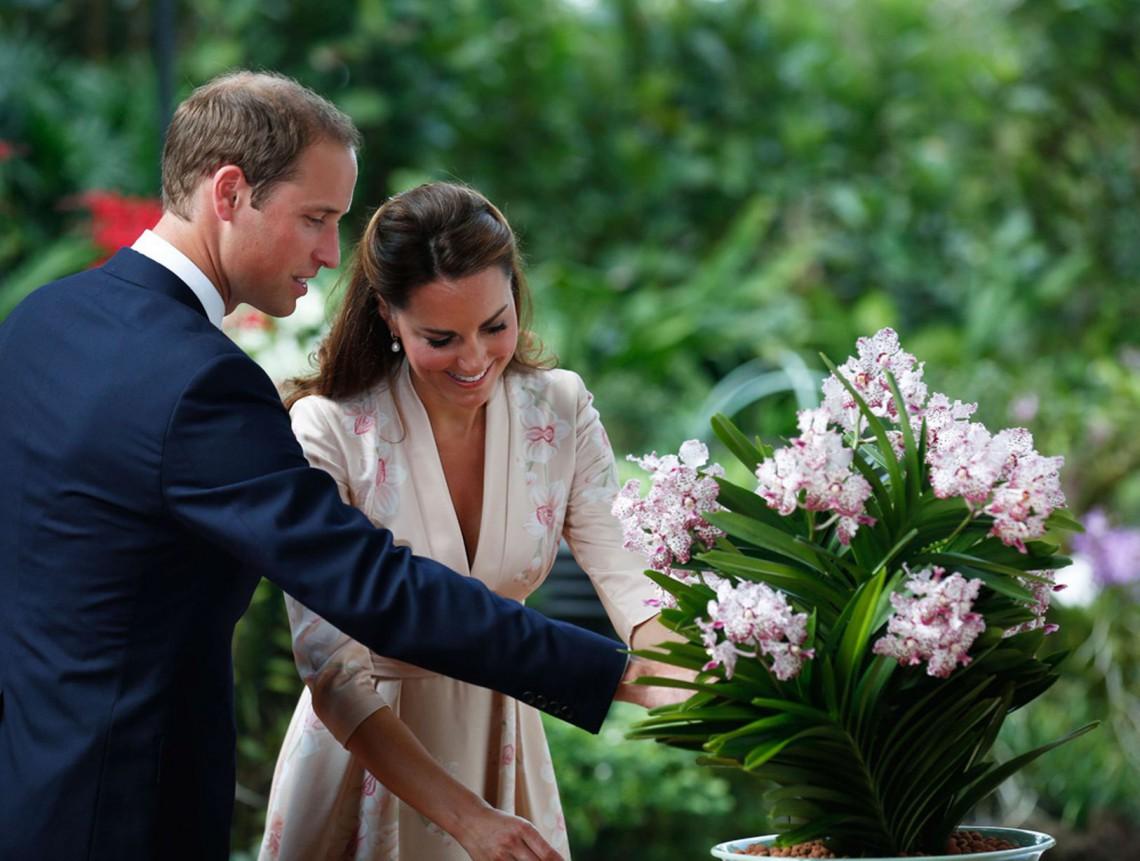 Kate păstrează flacăra pasiunii aprinsă în relația cu William cu ajutorul dansului la bară