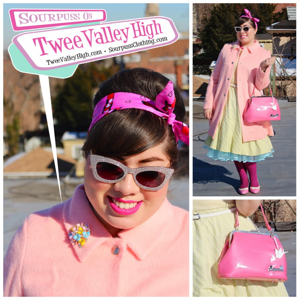 Twee-Valley-High-Sourpuss-Clothing-13