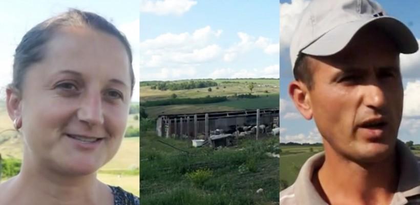 După ce au primit o oaie în dar la nuntă, doi soți din Șoldănești au construit o stână