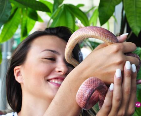 """Elena Ganciucova – fata cu șarpele în geantă: """"Rudy este un animal cu puține pretenții."""""""