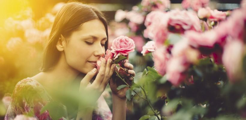 Aromele naturale și efectele lor surprinzătoare asupra organismului