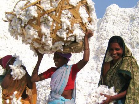 Legătura dintre lenjeria pe care o alegi și rata sinuciderilor în rândul fermierilor din India