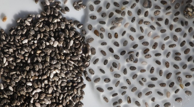 chai-seeds-672x372