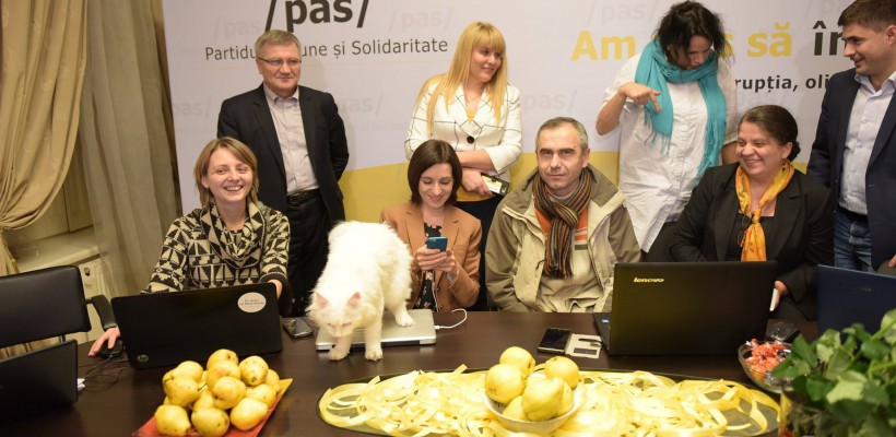 I-a prevestit ceva? O pisică de culoare albă i-a făcut ieri un semn Maiei Sandu (Foto)