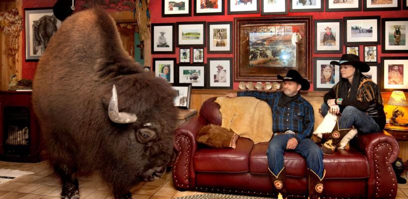 Un cuplu din Texas împarte locuința cu un bivol de o tonă! Este prietenos ca un câine și îi plac filmele de acțiune