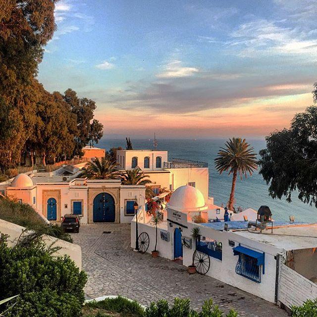 Cassie-de-Pecol-Tunisia