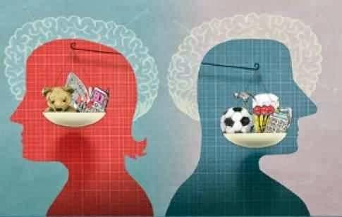 Creierele barbatilor si femeilor sunt la fel Numai stereotipurile de gen ne fac diferiti