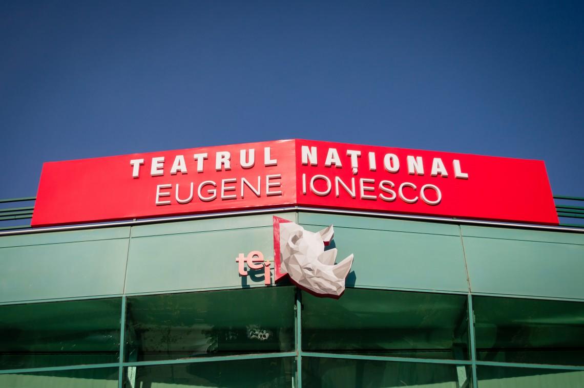 """Viața interioară a ultimei soții a lui Picasso și problema căsătoriei, prezentate în această săptămână la Teatrul Național """"Eugene Ionesco"""""""