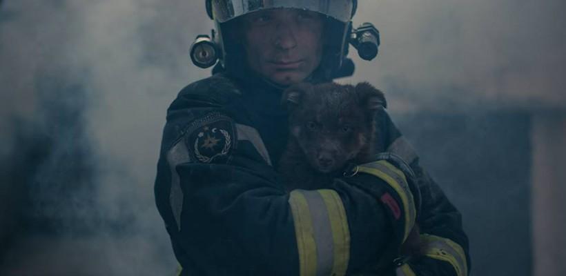 """Viața animalului e la fel de prețioasă ca viața omului. Salvatorul Dmitri Polșcin: """"Am făcut și respirație artificială animalelor"""""""