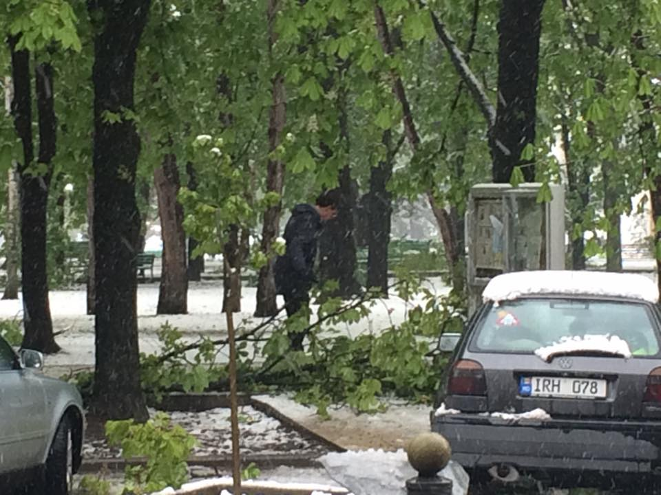 Poza zilei: primarul Dorin Chirtoacă adună crengi în parcul central (Foto, Video)