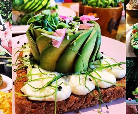 La Amsterdam există un restaurant cu bucate pregătite doar din avocado! E arhiplin zi de zi (VIDEO)
