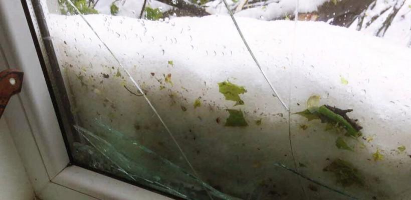 Mai multe școli și grădinițe din Capitală, avariate în urma condițiilor meteo din ultimele zile (FOTO)