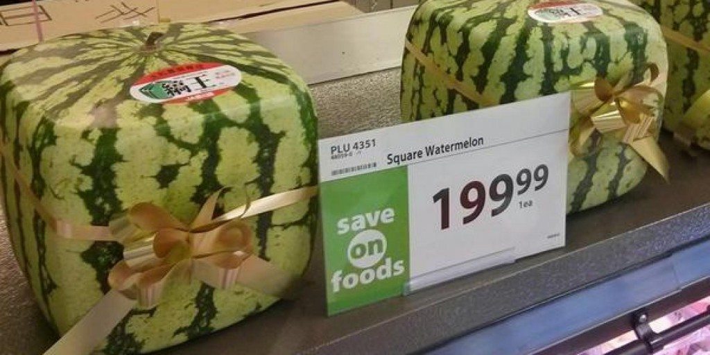 o-SQUARE-WATERMELONS-facebook