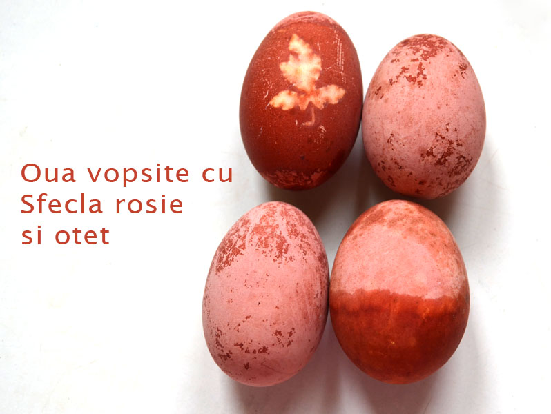 oua-vopsite-cu-sfecla-rosie-si-otet