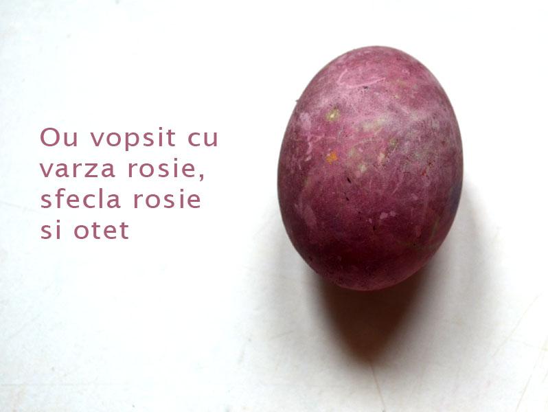 oua-vopsite-cu-varza-rosie-sfecla-rosie-si-otet1