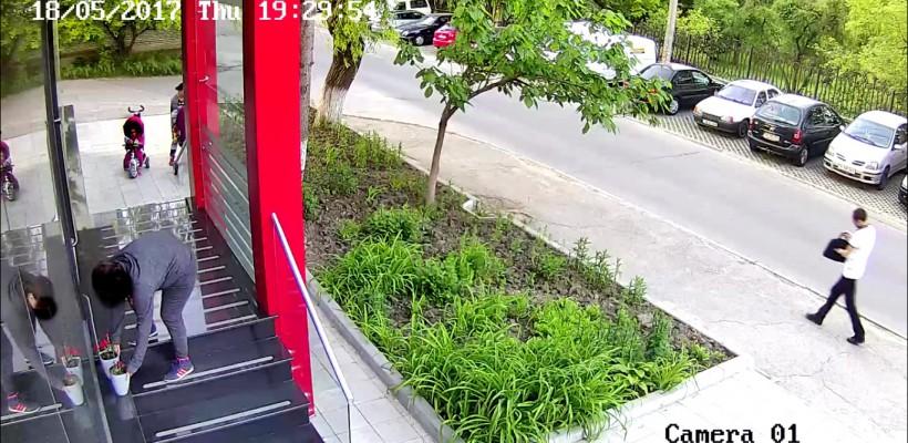 Ghivecele buclucașe, dispărute din curtea unei companii din Capitală, au revenit. Ce spune una dintre mame