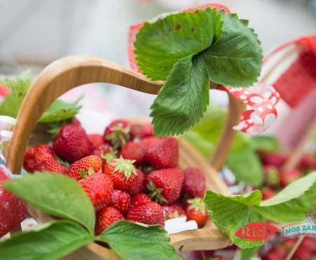 11 lucruri pe care trebuie să le știi despre Summer Berry Fair