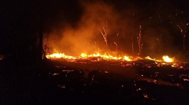 În timp ce tu dormeai… o parte din cimitirul Sfântul Lazăr din Chișinău ardea