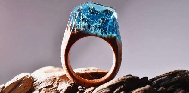 A cumpărat un inel cu o pădure în miniatură. Dar acum este propriul lor designer