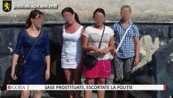 Șase tinere, escortate la poliție pentru practicarea prostituției (Video)