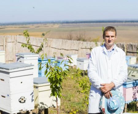 De la un roi, la sute de familii de albine! Istoria de succes a lui Ion Rău, bărbatul care deține o afacere dulce la Talmaza