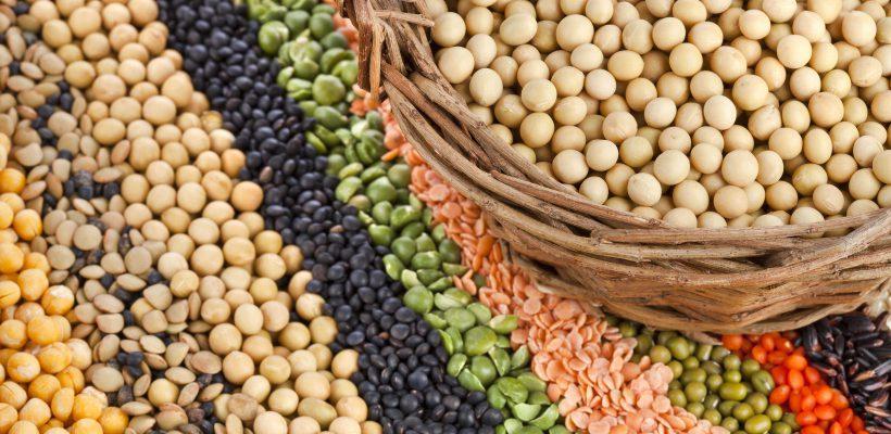Nucile, boboasele și cerealele trebuie ținute la înmuiat înainte de consum. Află de ce este obligatoriu!