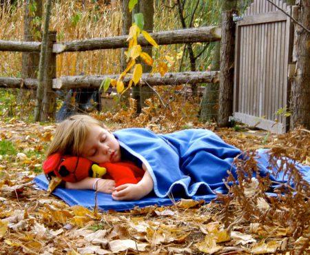 În unele grădinițe din Suedia, copiii dorm afară. De ce este atât de atractiv sistemul educațional suedez?