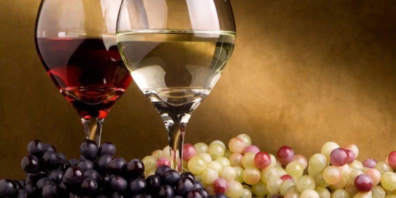 Profa de vin te învață cum să deosebești vinurile și să înțelegi care sunt vegane (Video)
