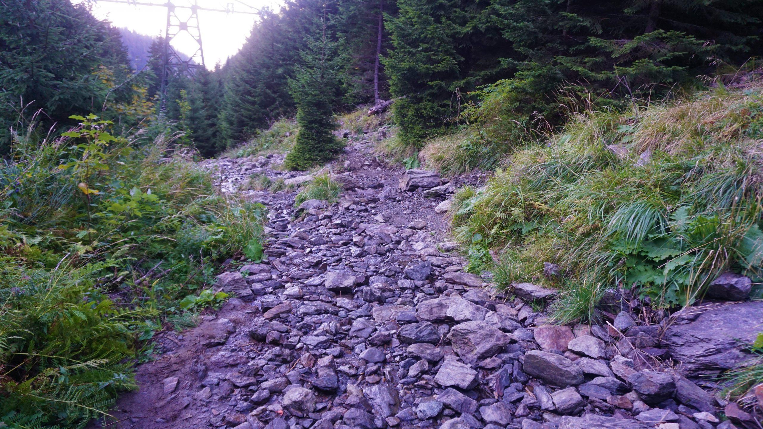 Drumul spre cascada